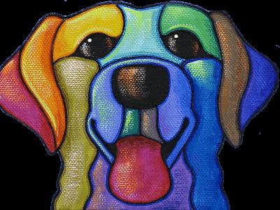 happy colorful dog