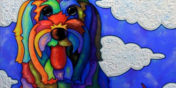 radar weather dog
